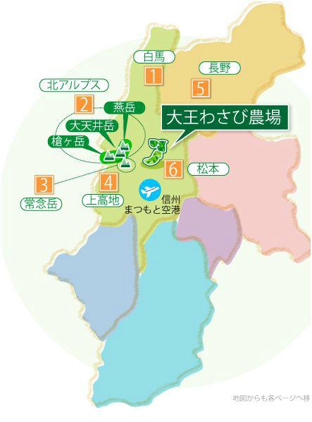2-wasabi.jpg