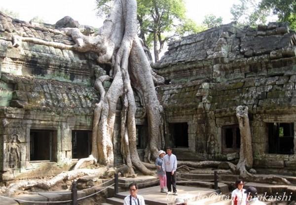 22-24-密林に埋もれた寺院-Ta Prohm_GF.jpg
