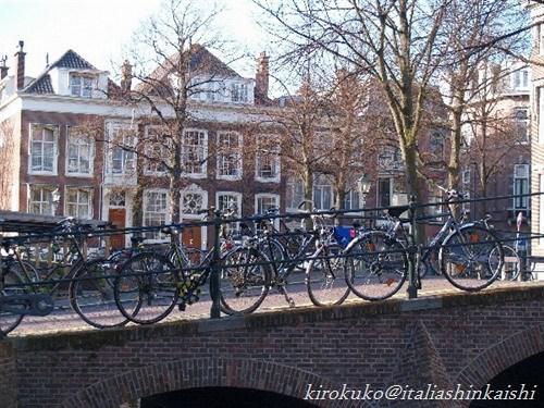 22ハーグ自転車P4097926_t_GF.jpg